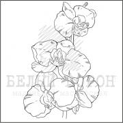 """штамп """"Орхидея"""""""