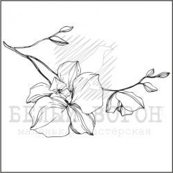 """штамп """"Веточка орхидеи маленькая"""""""